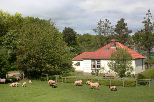Wagtail Cottage, Outchester & Ross Farm Cottages, Northumberland