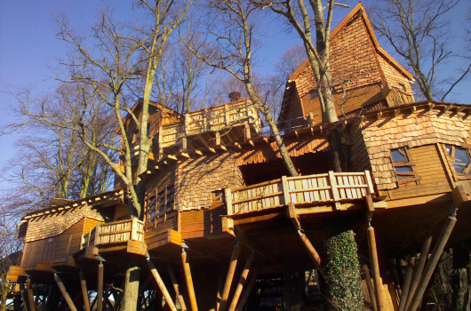 The Tree House Restaurant, The Alnwick Garden, Northumberland