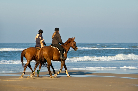 Horse riding on Northumberland beach