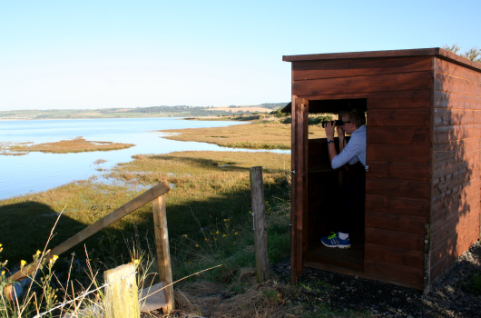 Bird Watching Hide